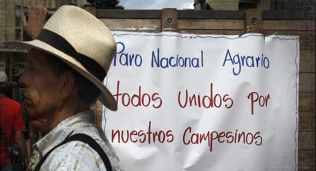 A pesar que las manifestaciones han sido tranquilas, en algunas zonas del País los violentos han hecho de las suyas, ha si lo indicó el Gobierno Nacional.