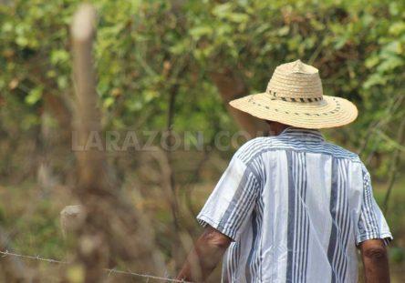Campesinos-retornantes-444x311.jpg