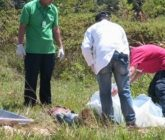 asesinato-165x140.jpg