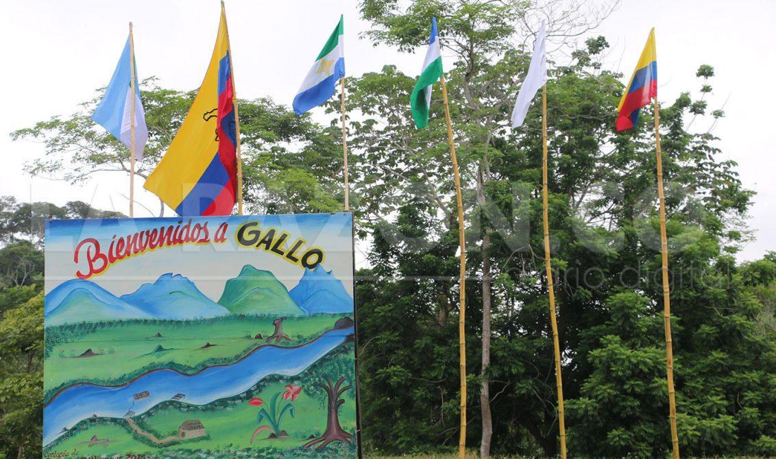 Pese a dificultades, apoyamos a Gallo como Zona Veredal: Gobierno Departamental