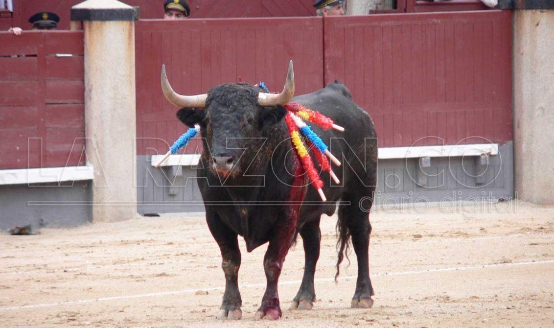 A la expectativa por decisión de la Corte sobre corridas de toros y corralejas