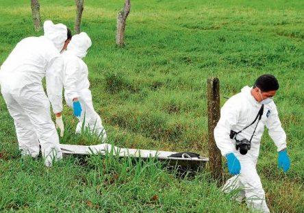 Joven-asesinado-en-zona-rural-Puerto-Libertador-700x431-444x311.jpg
