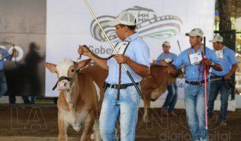 Feria-Ganadera-342x200.jpg