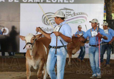 Feria-Ganadera-444x311.jpg