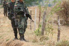 policias-239x160.jpg
