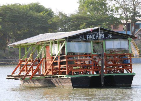 planchon-488x350.jpg