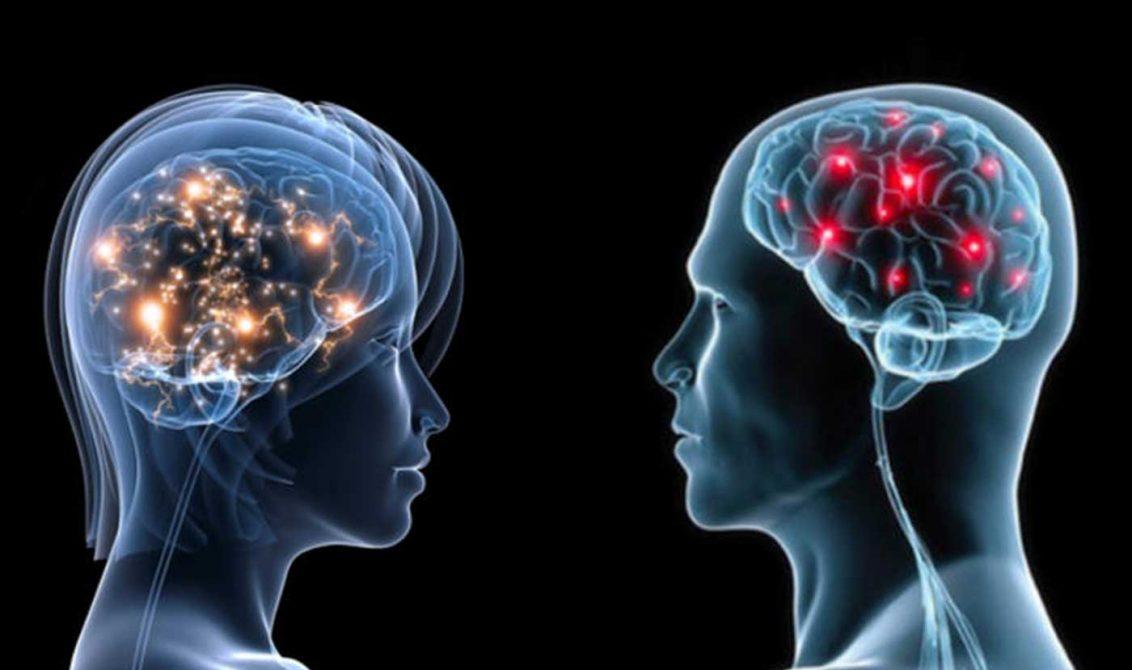 Al parecer, las mujeres tienen un cerebro más activo que los hombres