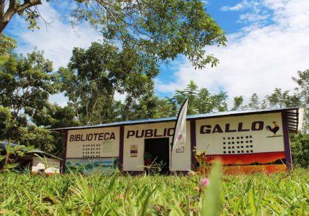 BIBLIOTECA-GALLO-3-444x311.jpeg