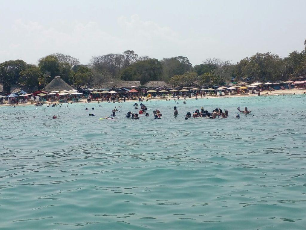 Playas de Santa Marta y Cartagena en alerta por presencia de 'aguamala'