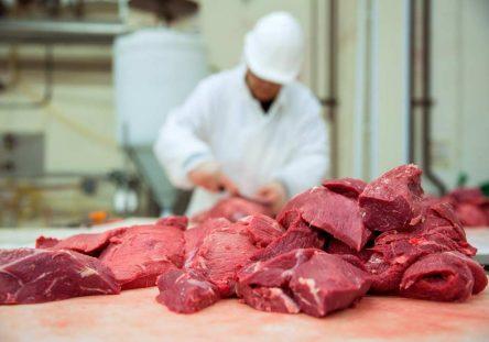 carne-444x311.jpg