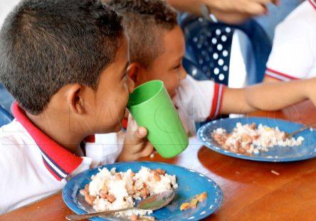 Plan-de-Alimentación-Escolar-PAE-444x311.jpg