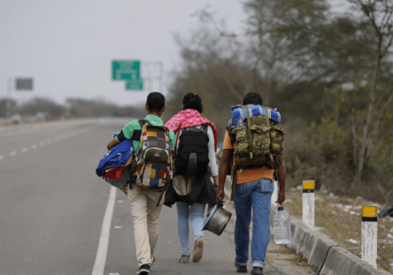 venezolanos-viajan-hacia-peru-ap-1-444x311.png