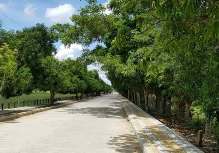 corredor-vial-cotorra123-444x311.jpg