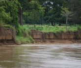 punto-critico-erosion-monteria-165x140.jpeg