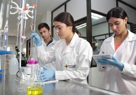 Desde-el-Programa-se-desarrollan-proyectos-de-investigación-con-relevancia-científica-e-impacto-social-444x311.jpg