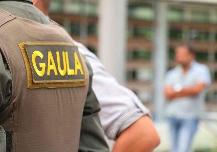 Gaula-444x311.jpg