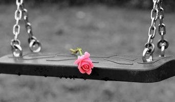 pink-rose-on-empty-swing-3656894_640-342x200.jpg