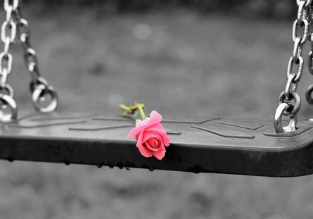 pink-rose-on-empty-swing-3656894_640-444x311.jpg