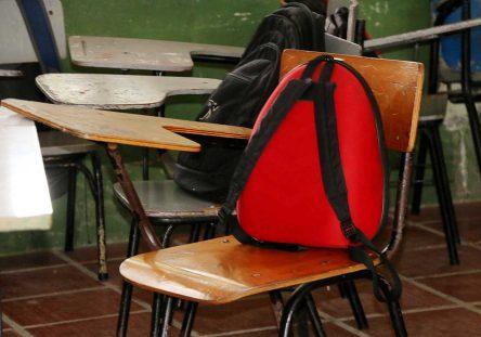 escolar-444x311.jpg