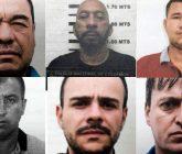 narcotraficantes-165x140.jpg