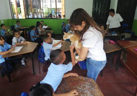 animales-ruta-escolar1-444x311.jpg