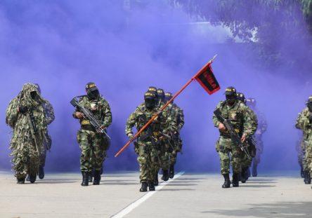 desfile-del-20-de-julio-4-444x311.jpeg