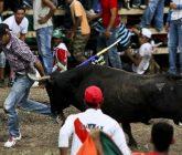 Toro-123-165x140.jpg