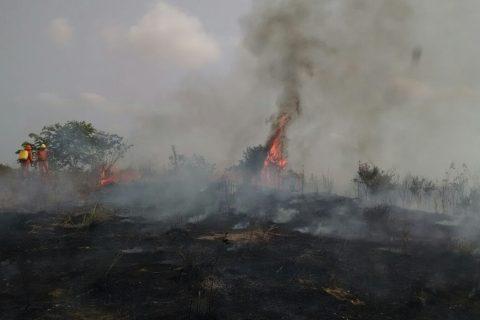 Incendio en Ciénaga de Corralito fue provocado, responsables deben responder: CVS